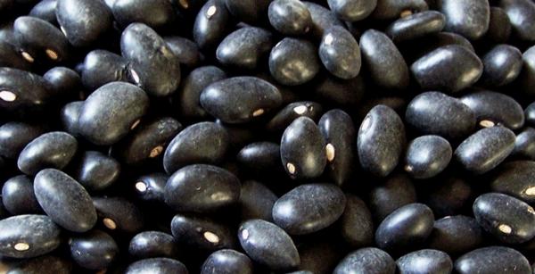 crn-grav