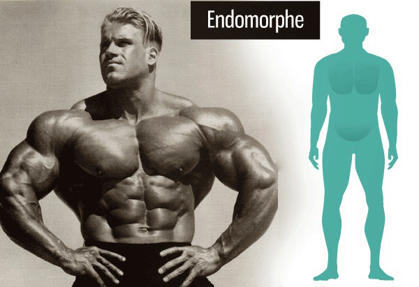 endomorf-mazi