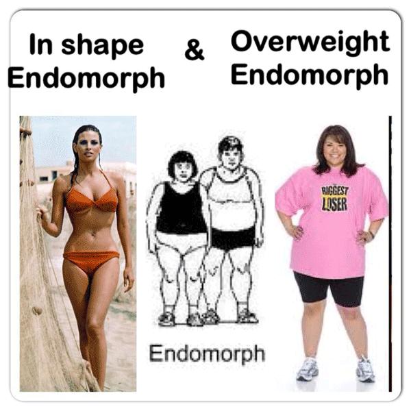 endomorf-zeni